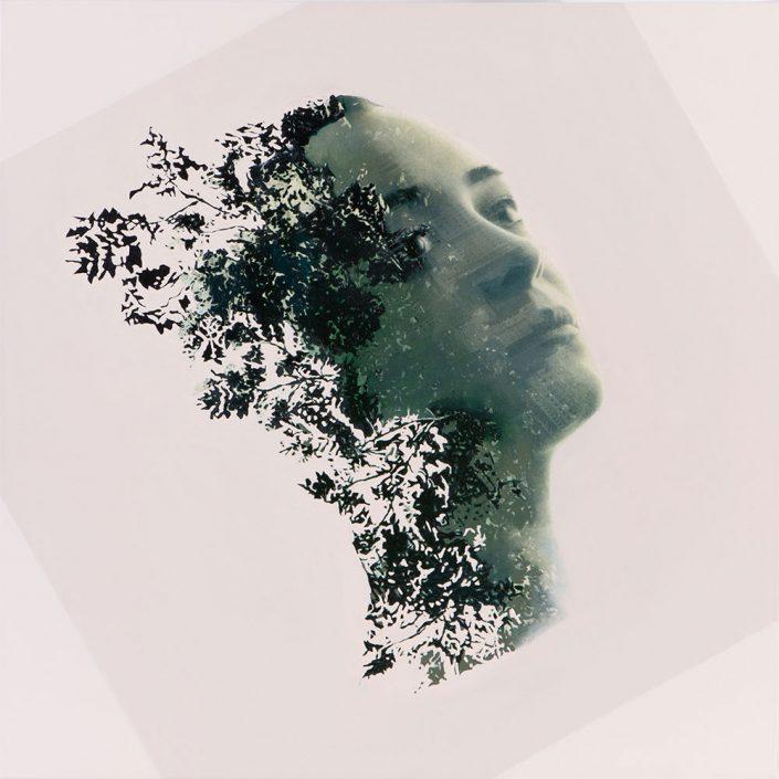 Şifa Girinci - Progress II (2014)