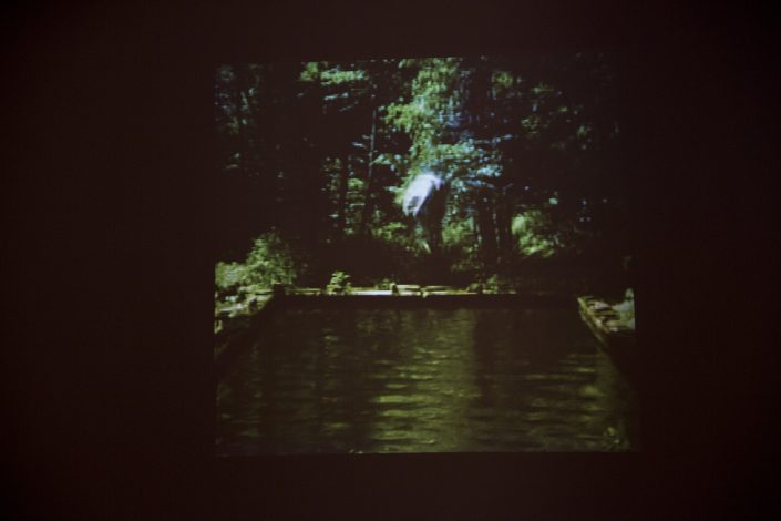Bill Viola - The Reflecting Pool